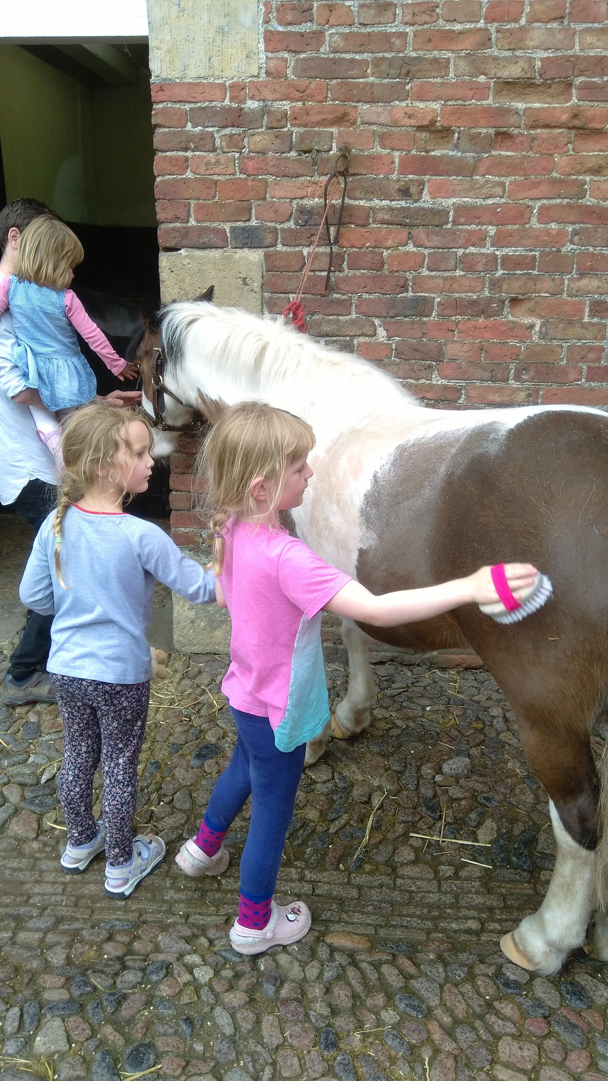 a sledmere stables