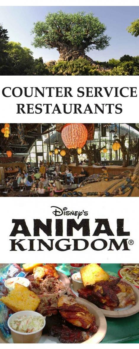 5-Best-Counter-Service-Restaurants-in-Animal-Kingdom-Disney-World
