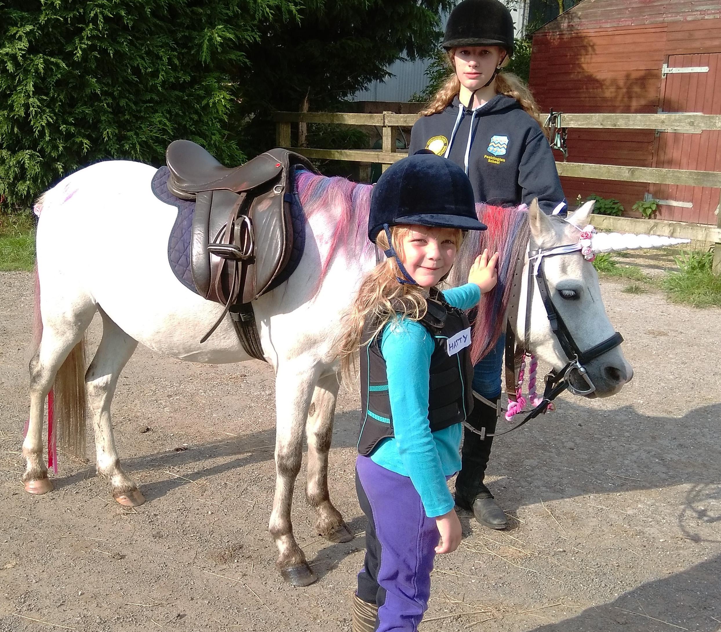 burnby equestrian (12)