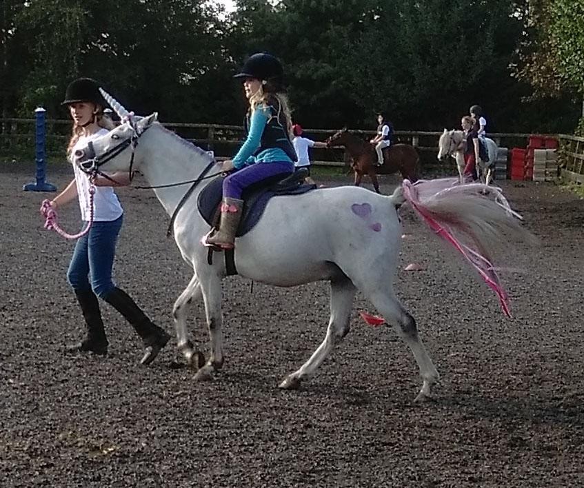 burnby equestrian (11)