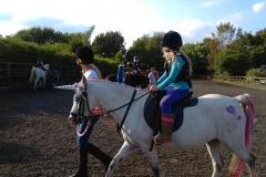 burnby equestrian (10)