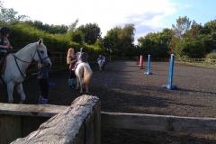 burnby equestrian (13)