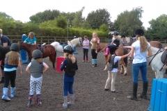 burnby equestrian (7)