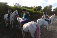 burnby equestrian (9)