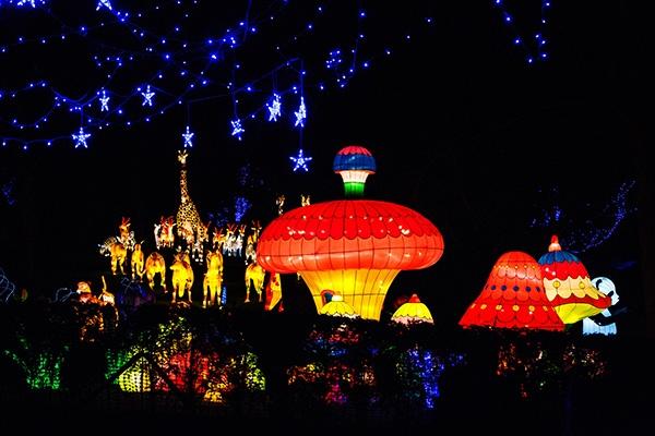 magical lantern festival yorkshire christmas