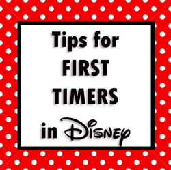 top-tips-for-first-timers-in-Disney-World-Florida