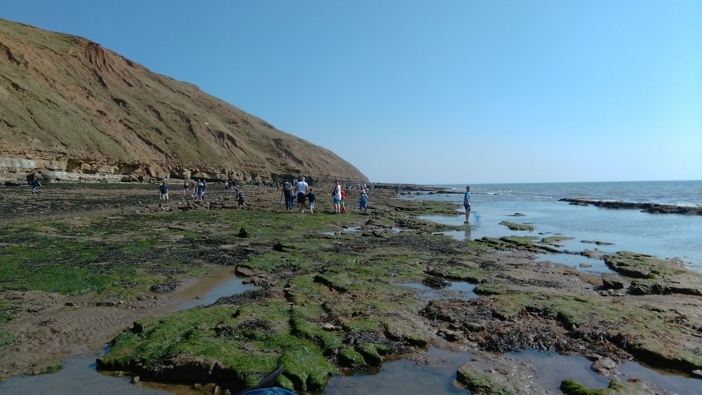 Filey Brigg5