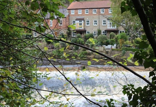 River Walks and the Yorkshire Fish Pass (1)