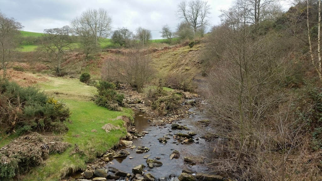 River Walks and the Yorkshire Fish Pass (2)