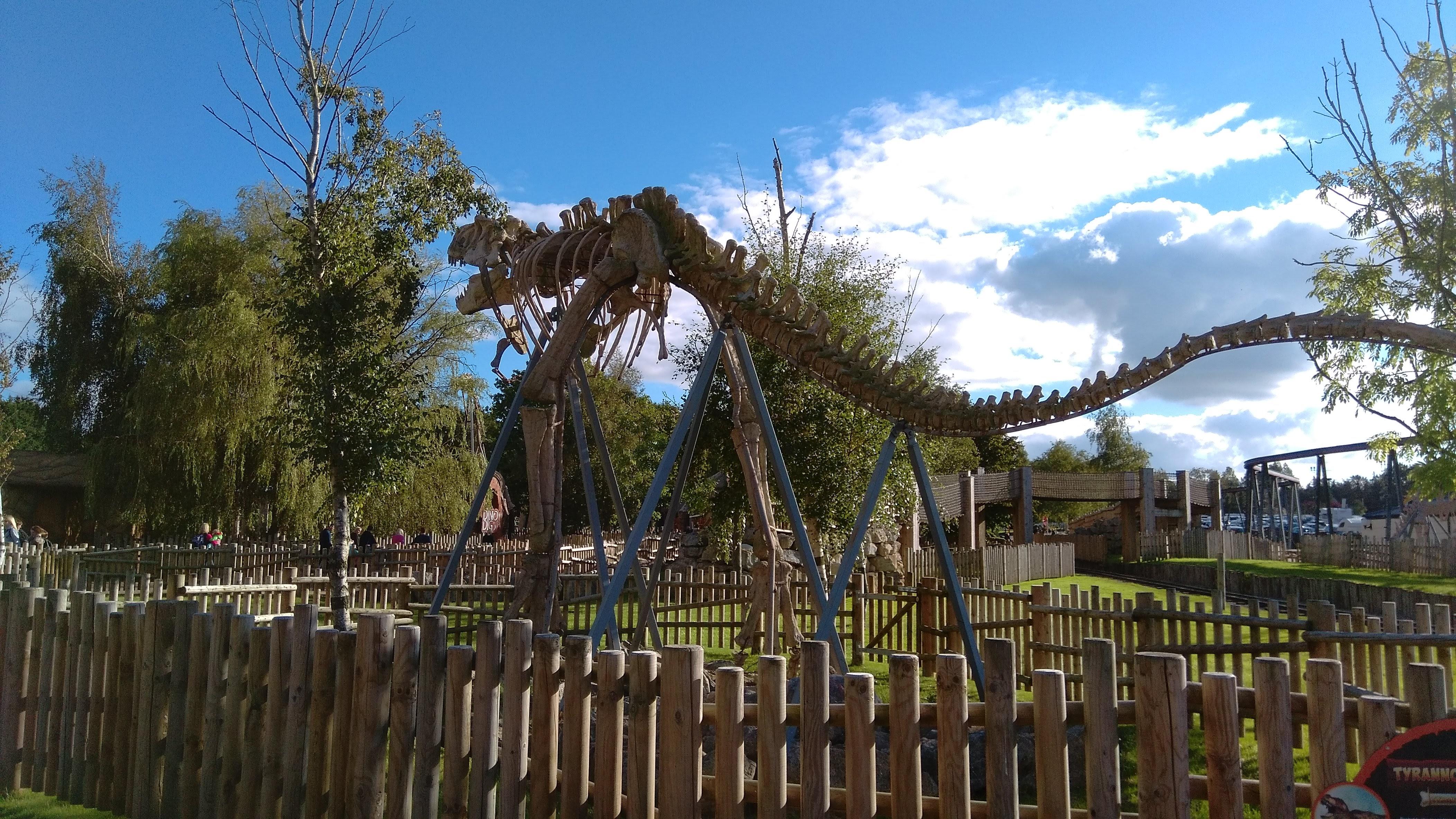 flamingo land theme park yorkshire (15)