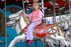 flamingo land theme park yorkshire carousel