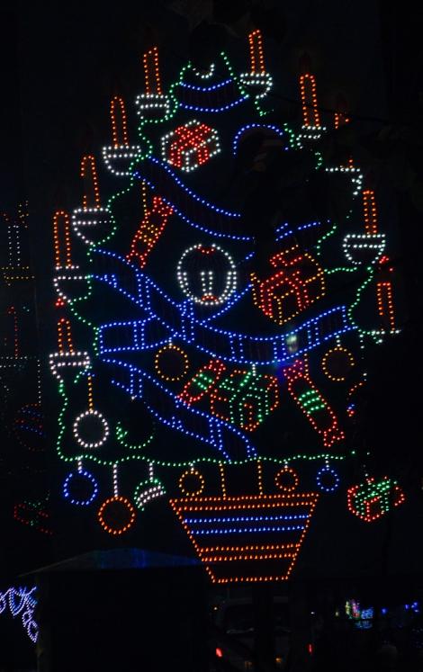 Kolkata Christmas Festival (3)