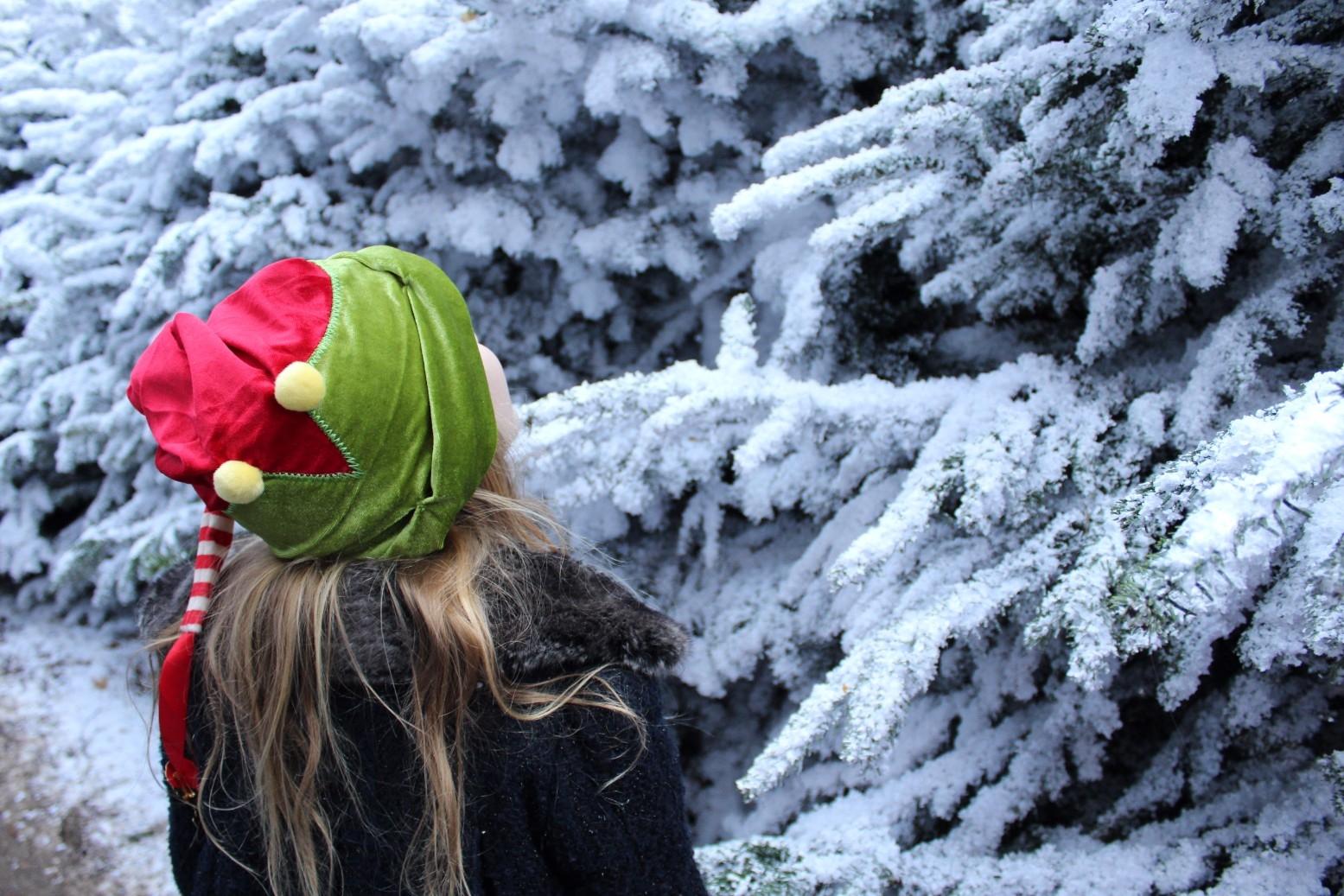 Best Santa in the UK Lapland UK (8)