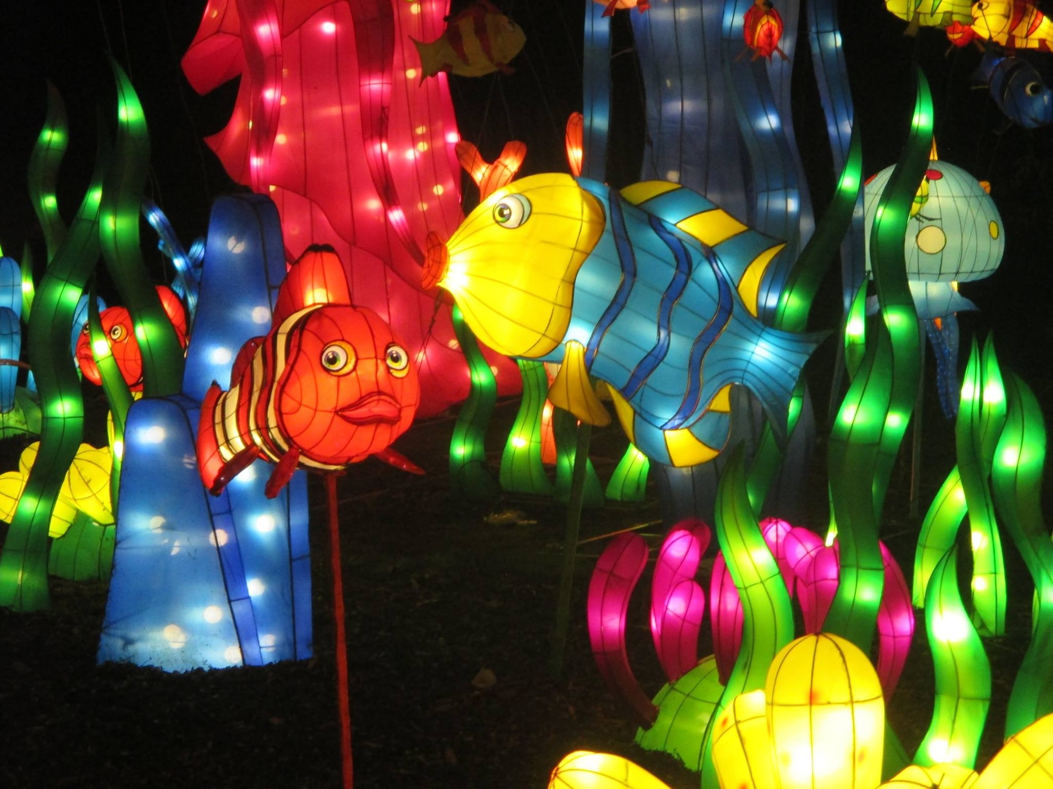 magical lantern Leeds Yorkshire (6)