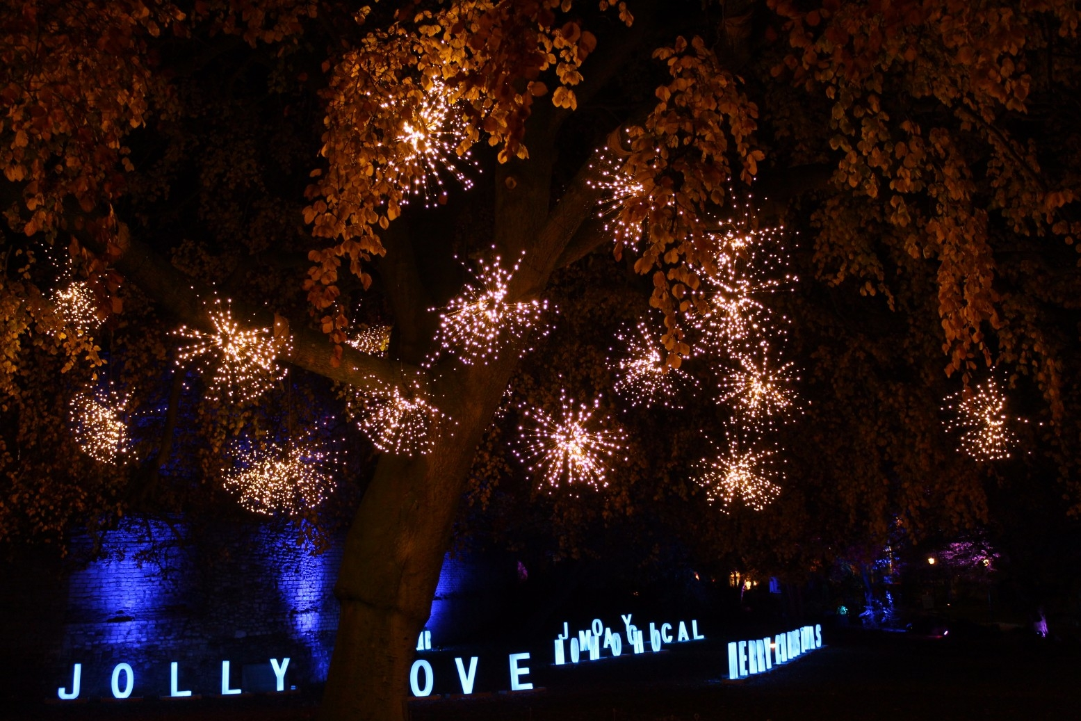 Christmas at Museum Gardens Review (2)