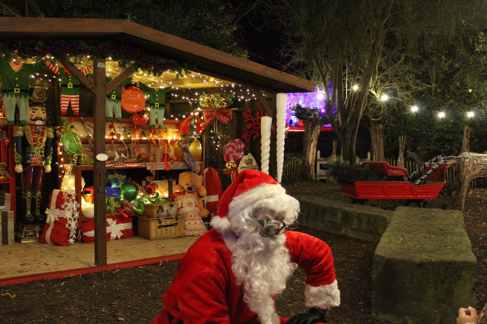 Christmas at Museum Gardens Review (4)