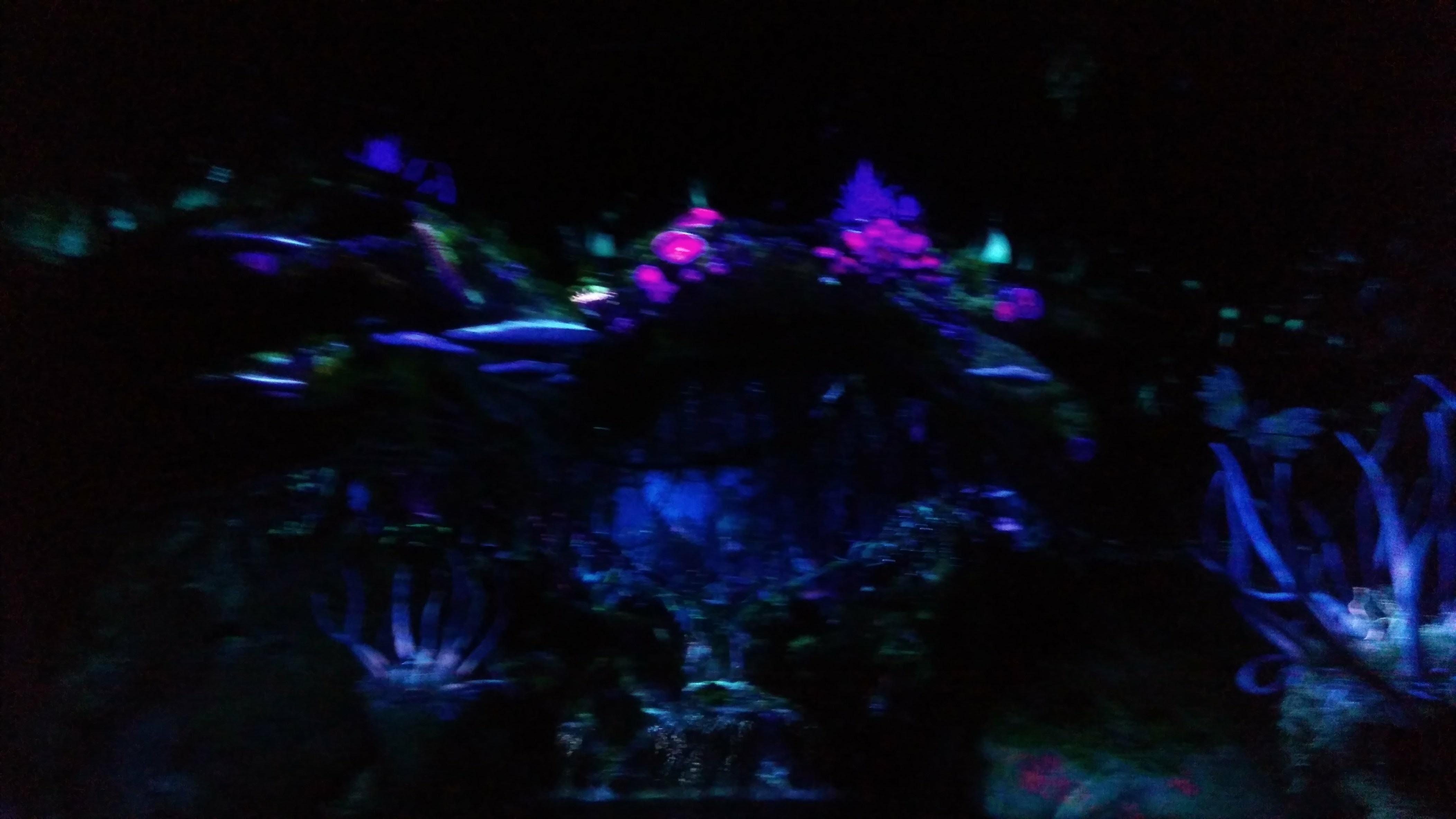 Na\'vi River Ride Pandora at Animal Kingdom - review (7)