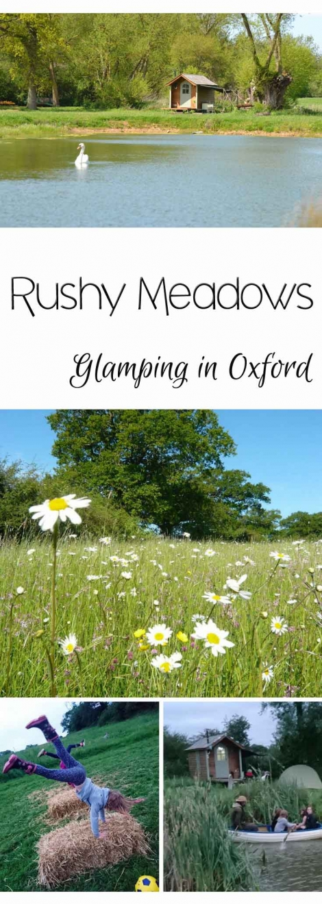 Rushy Meadows Glamping Camping Oxford Canopy & Stars (9)