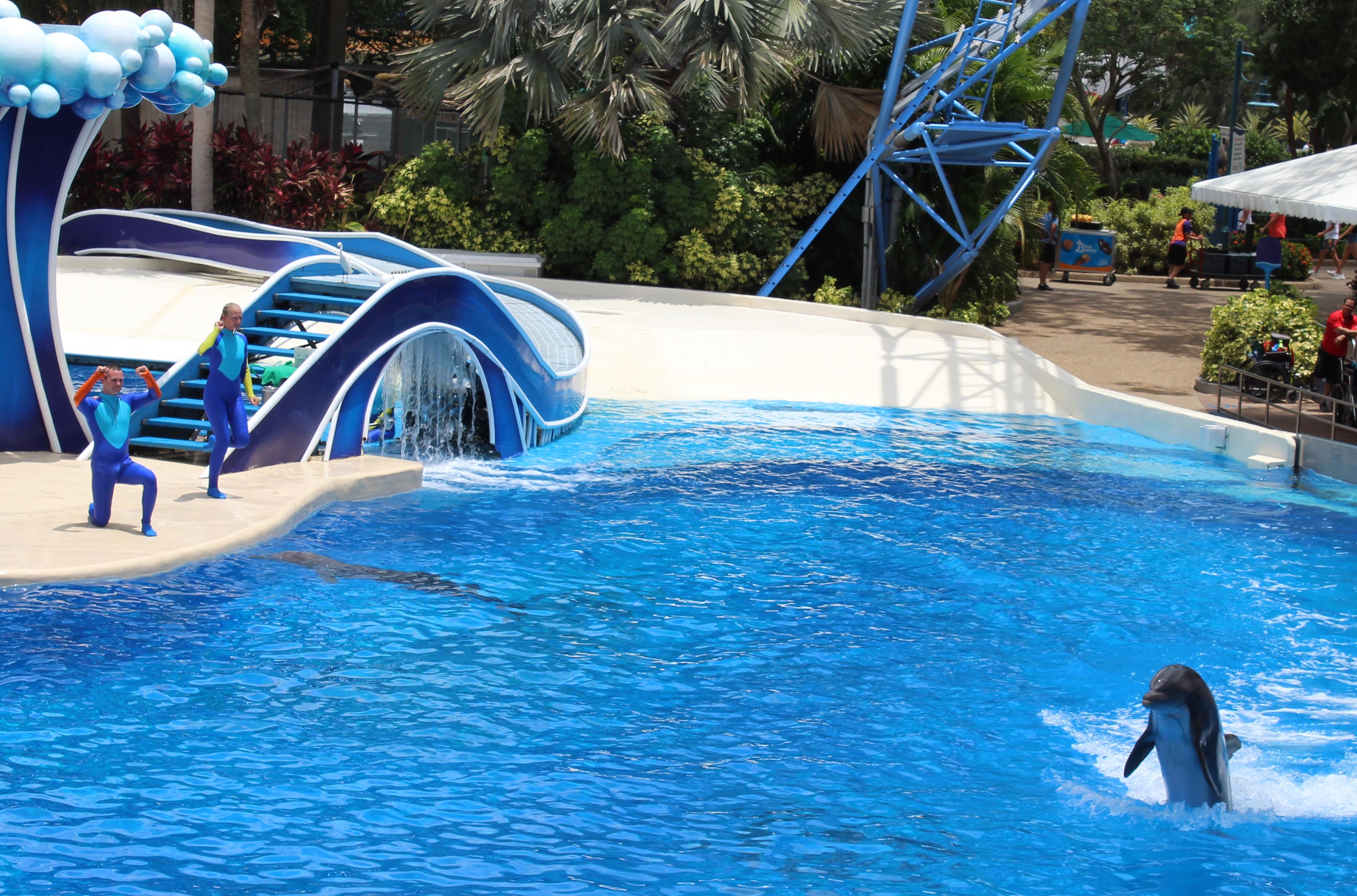 SeaWorld Orlando Florida Review (10)