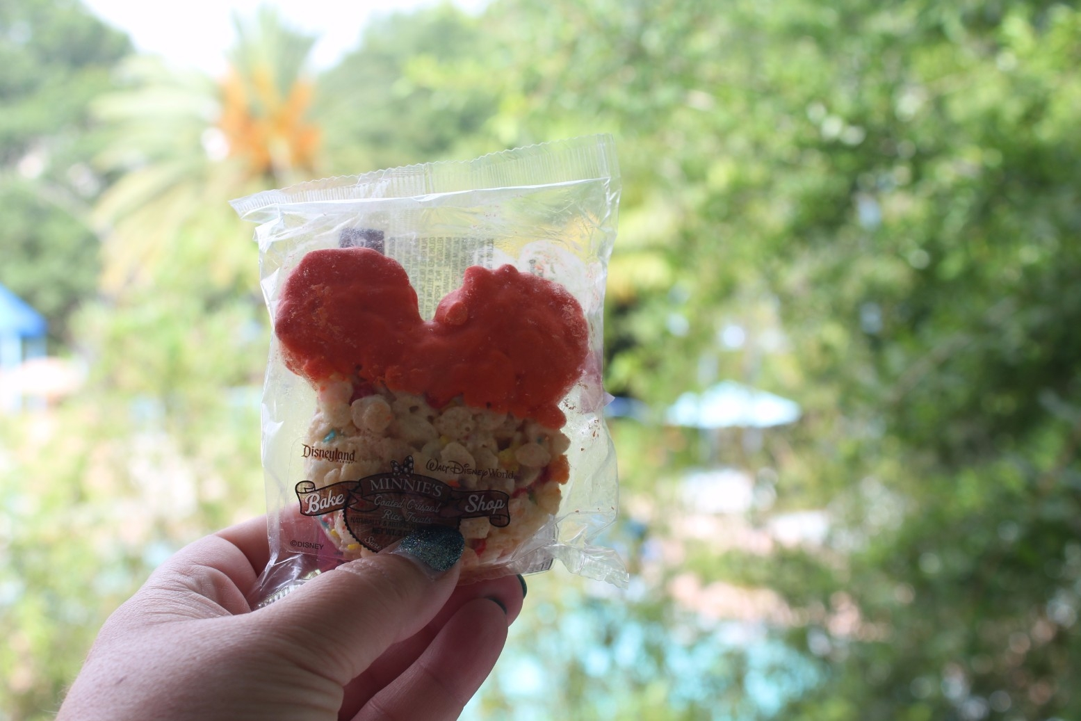 snack credits at Disney Springs Orlando (4)