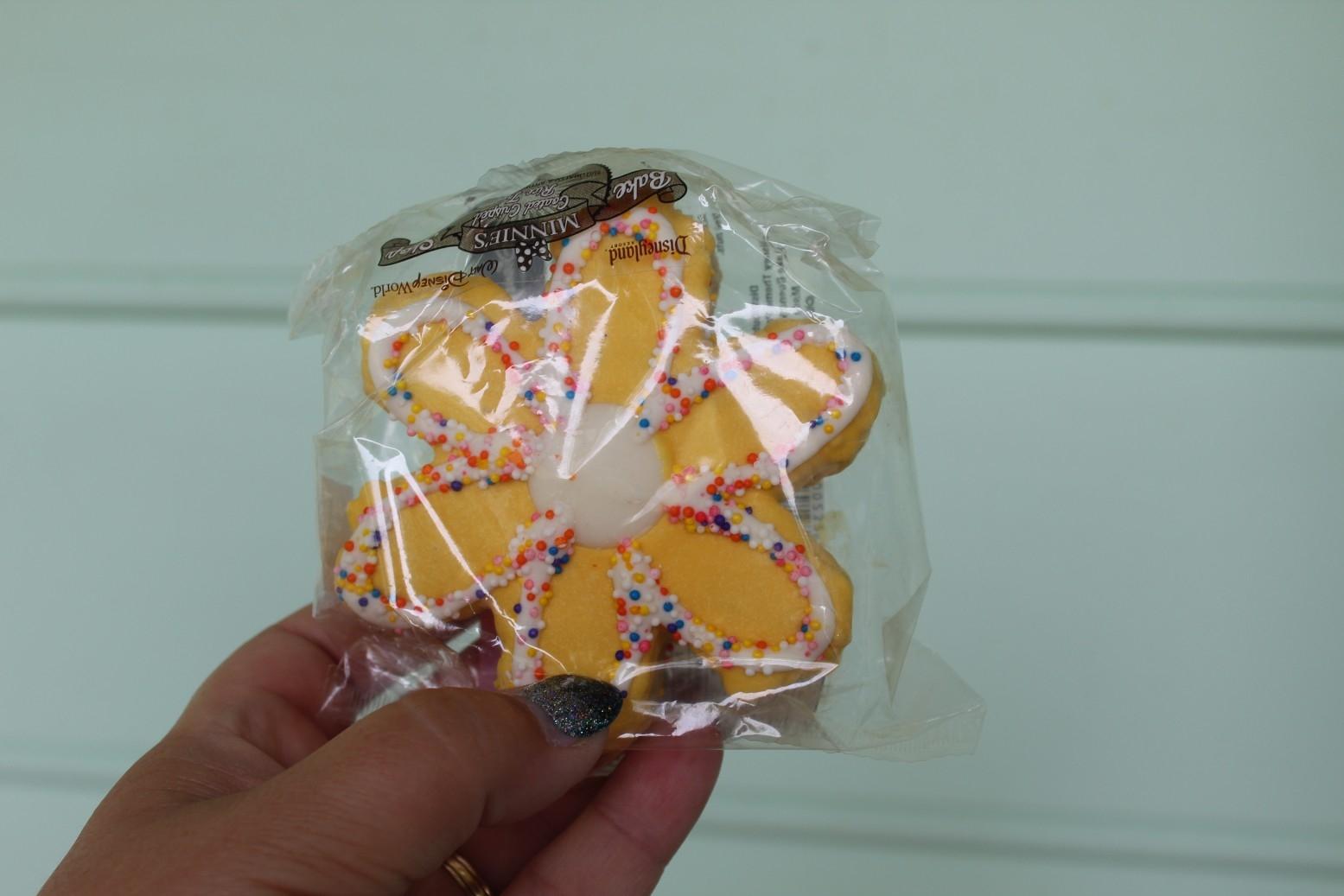 snack credits epcot (4)