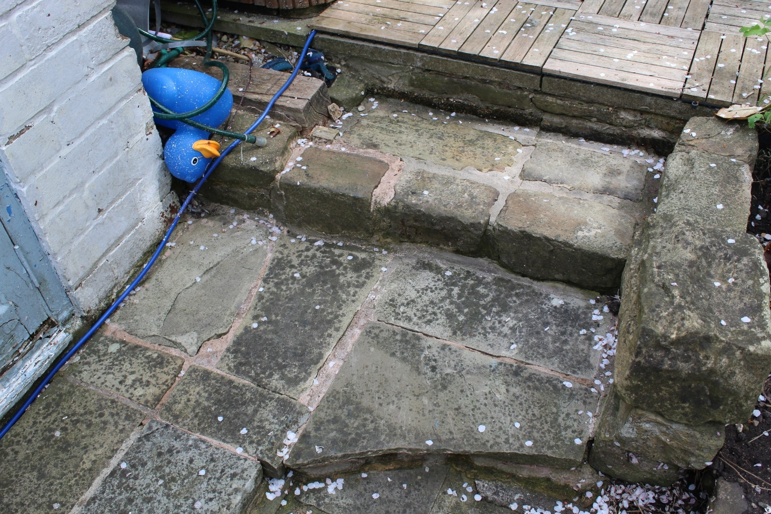 steps after stihl pressure washer review