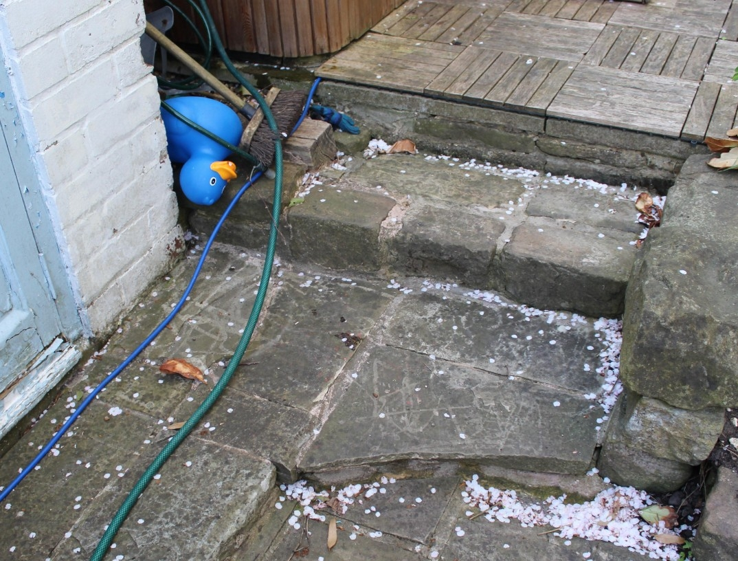 steps before stihl pressure washer review