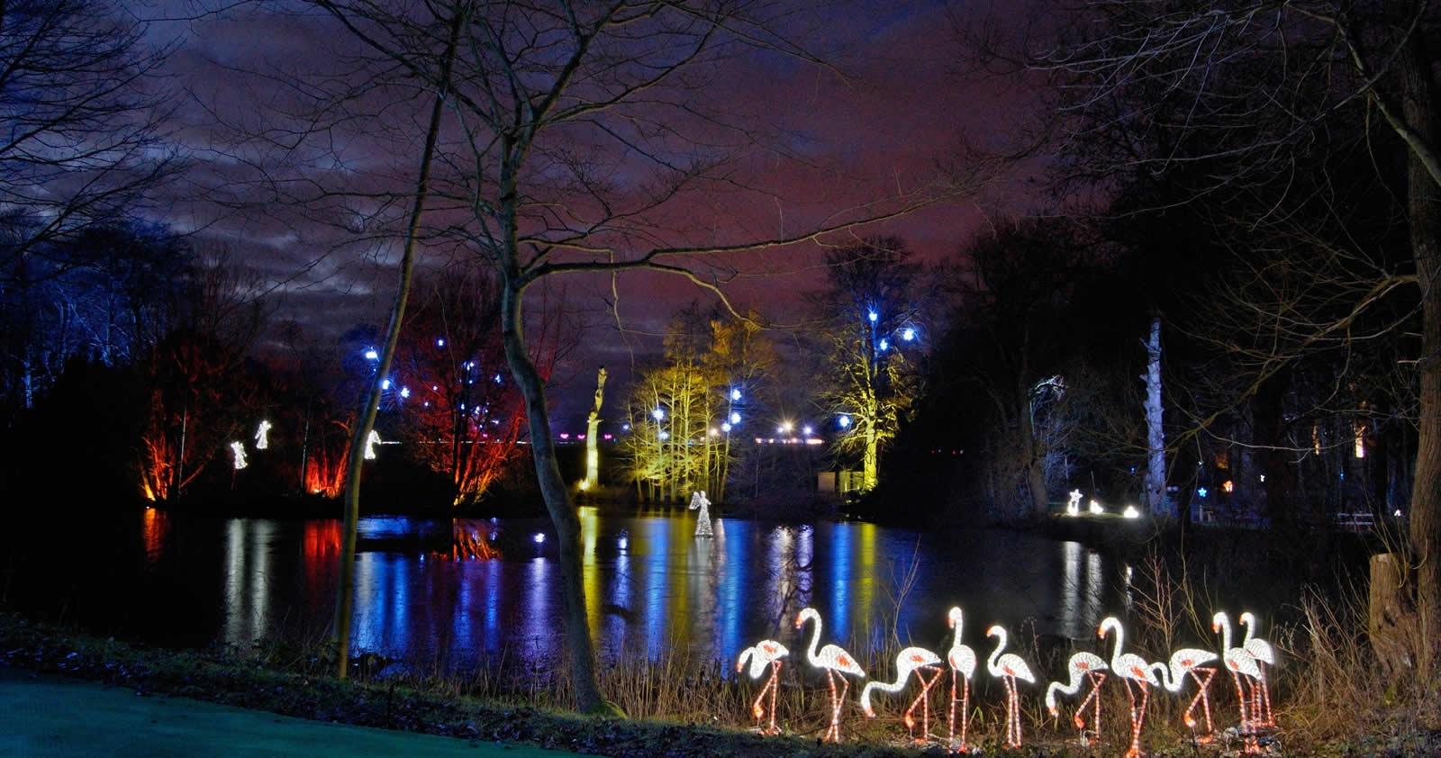 The Christmas Adventure at Stockeld Park (7)