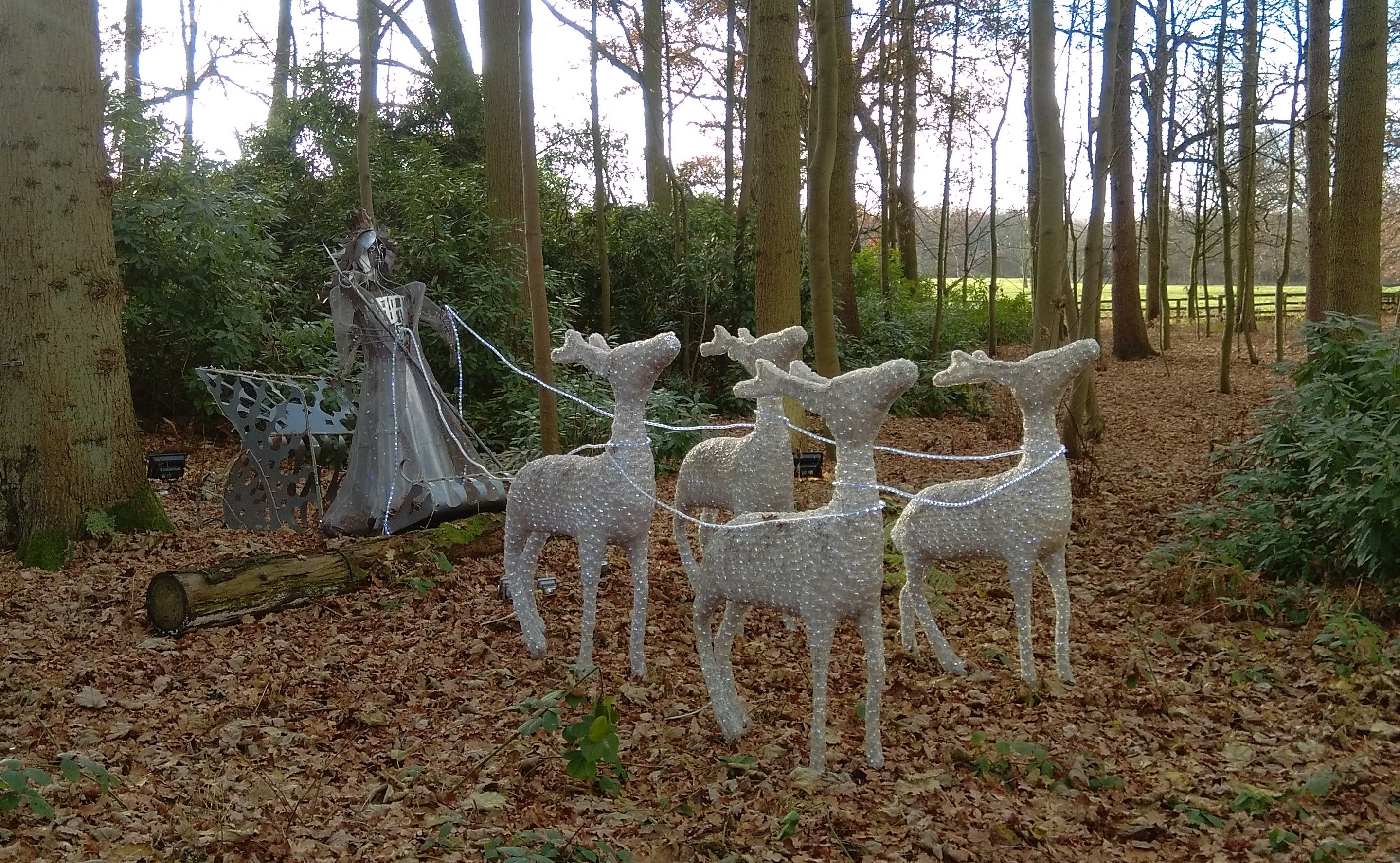 The Christmas Adventure at Stockeld Park (11)