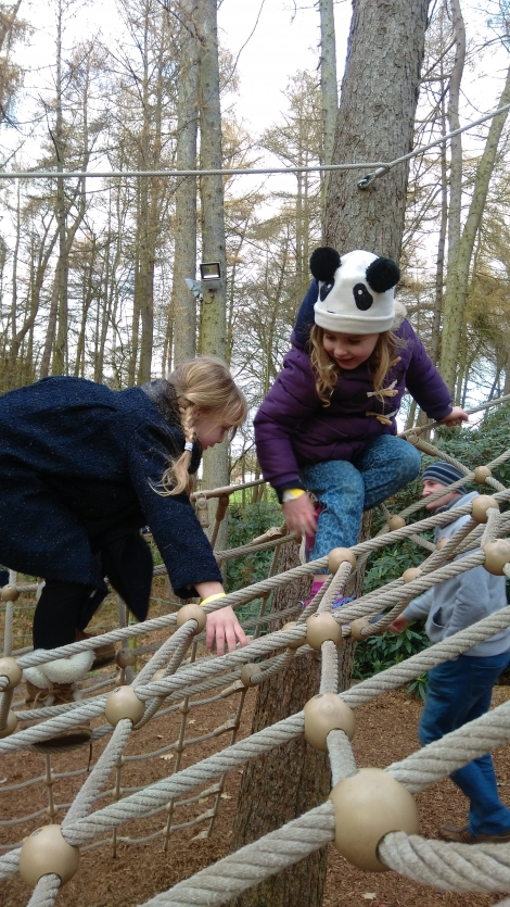 The Christmas Adventure at Stockeld Park (13)