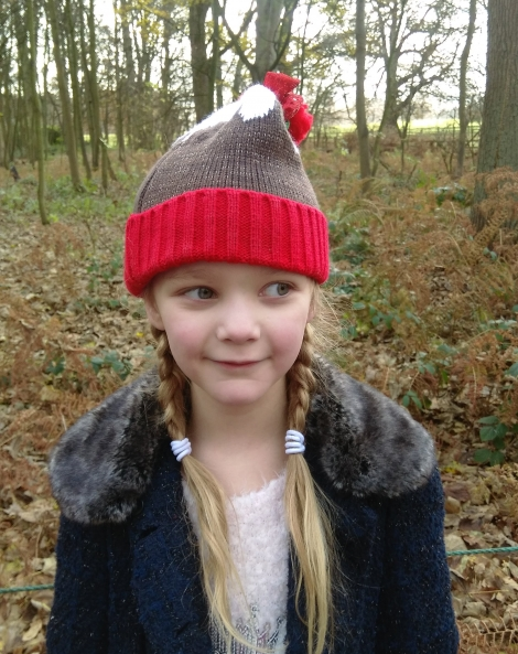 The Christmas Adventure at Stockeld Park (5)