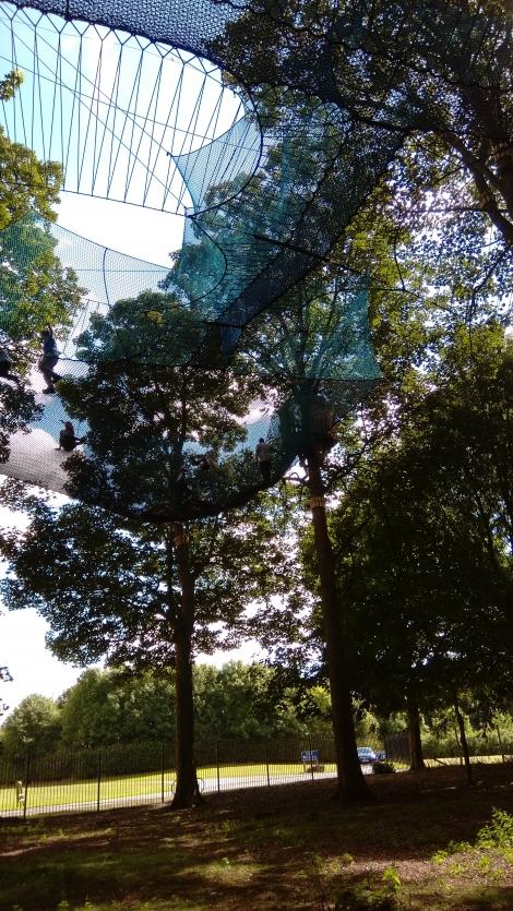 TreeTop Nets, Yorkshire