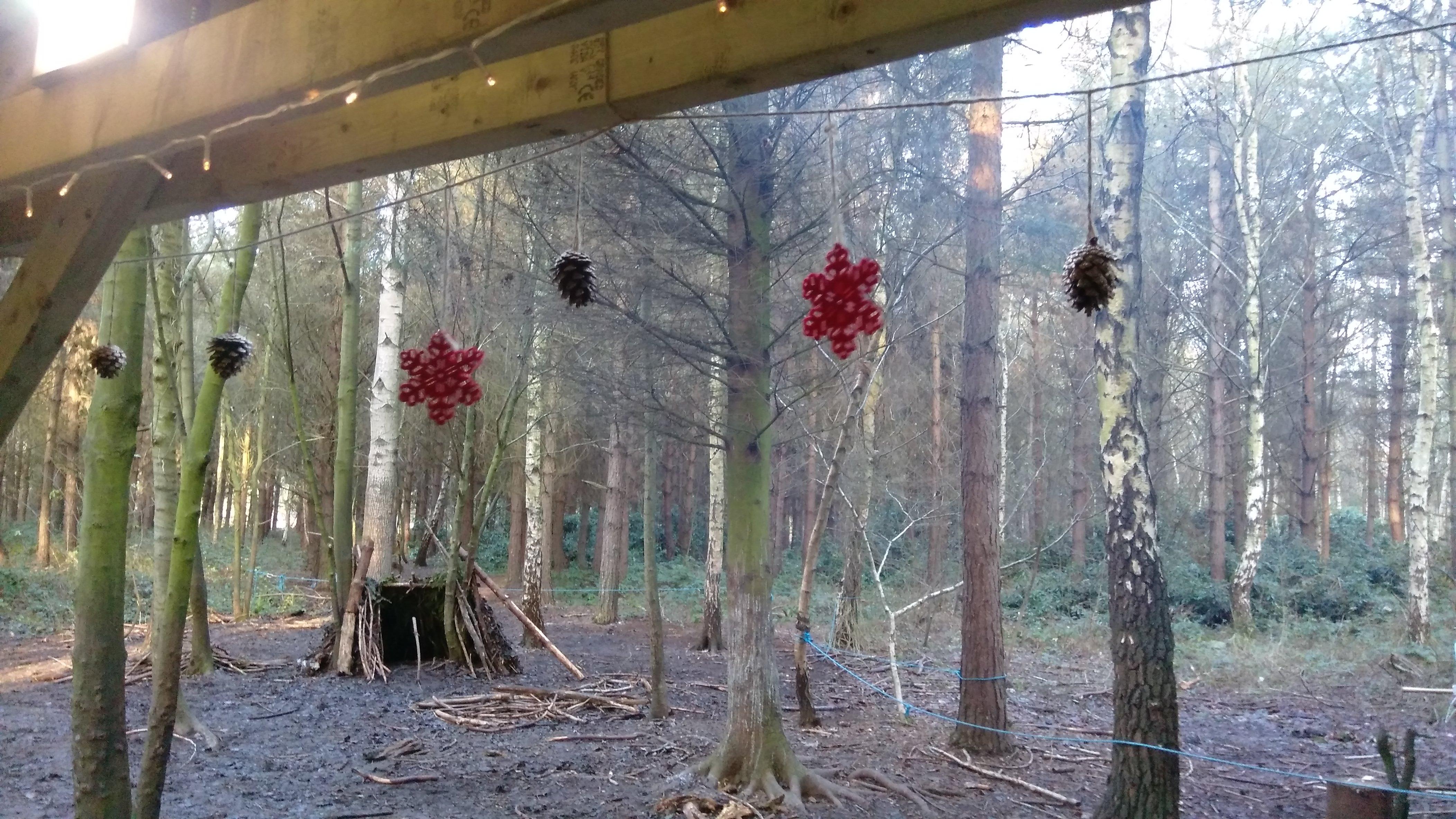 the woodland adventure company stamford bridge (6)