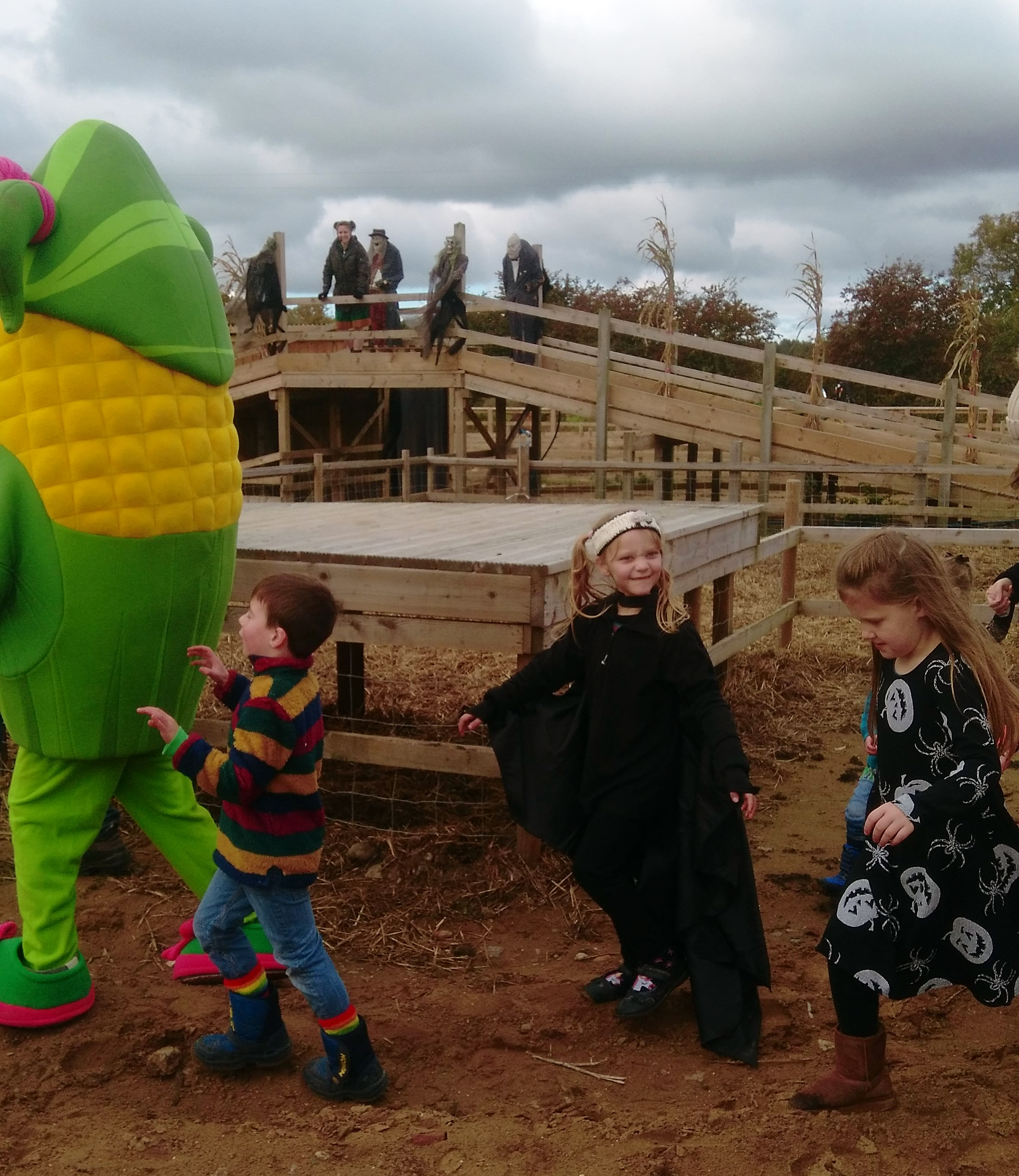 york maze halloween fancy dress
