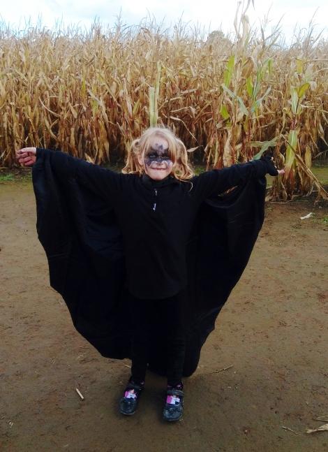 a York Maze Halloween (2)