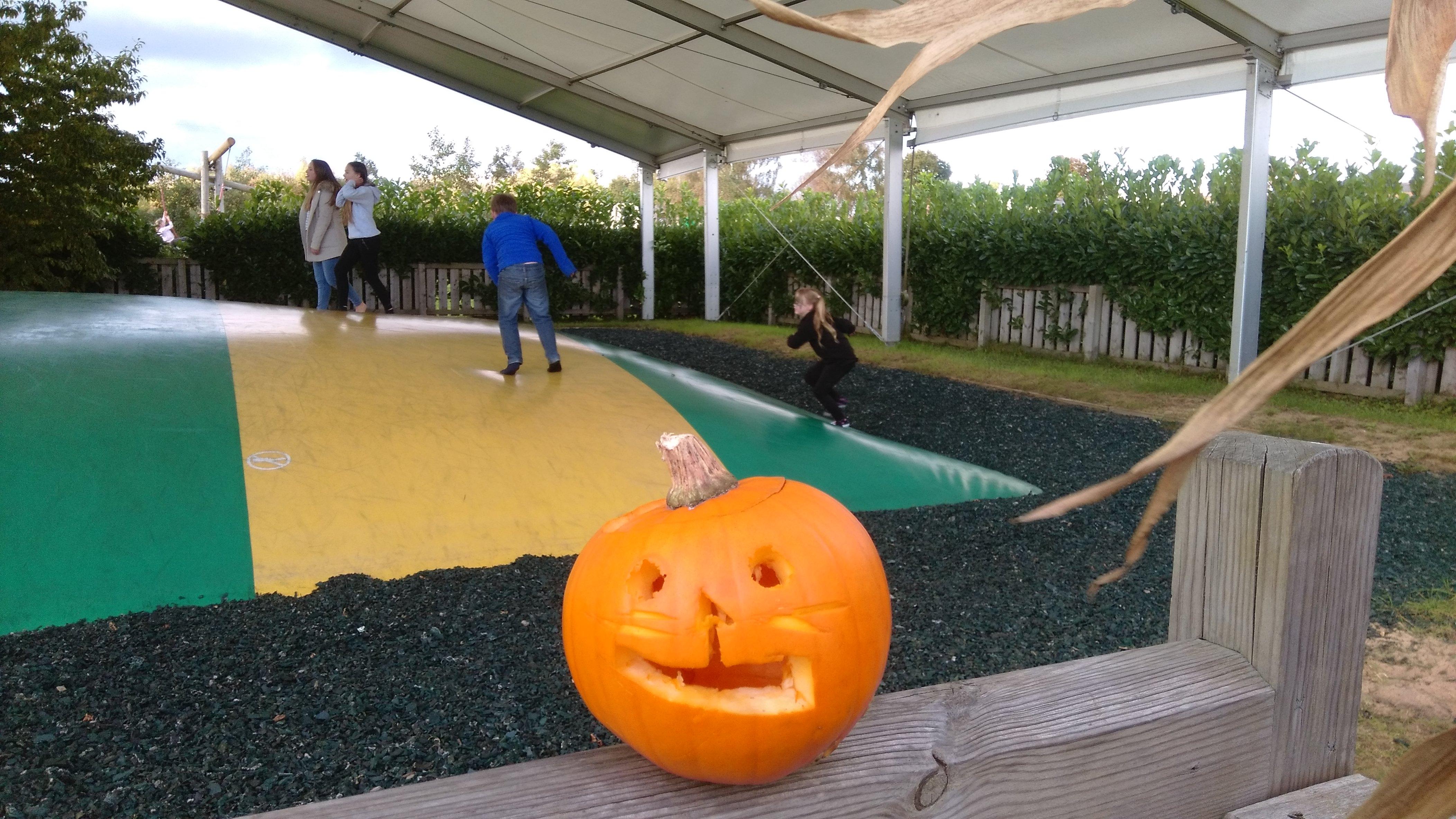 a York Maze Halloween (8)
