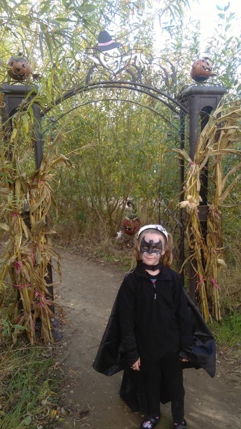 a York Maze Halloween (9)