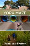 york maze - panto on a tractor