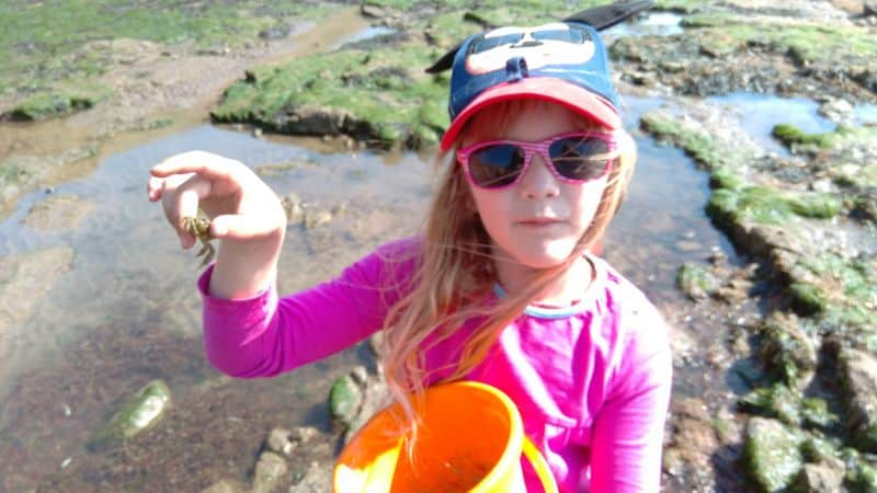 Filey Brigg Rockpooling