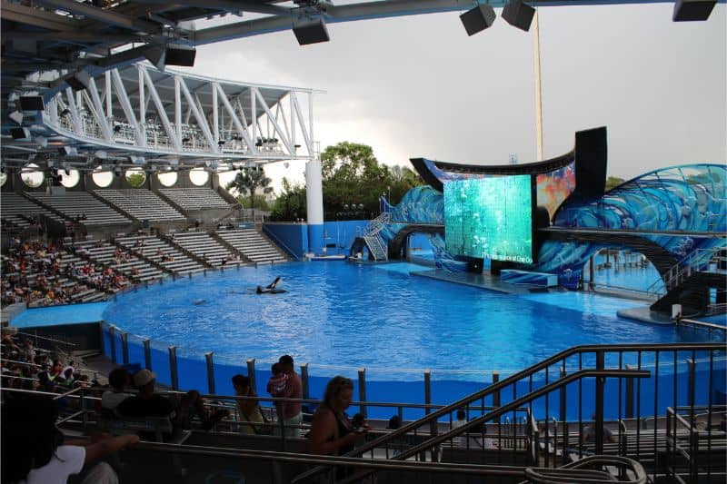 SeaWorld Orlando Florida Review