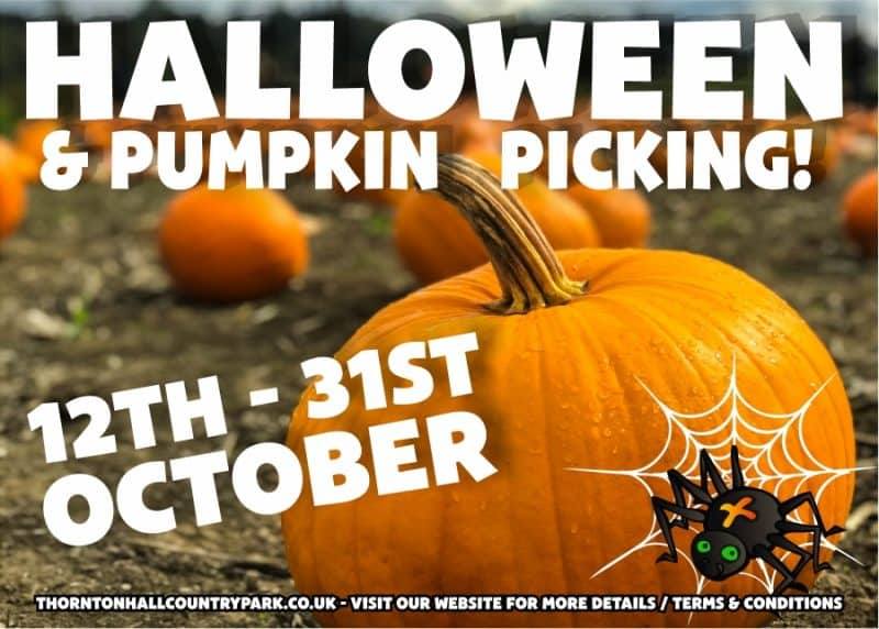 Halloween Days Out Yorkshire