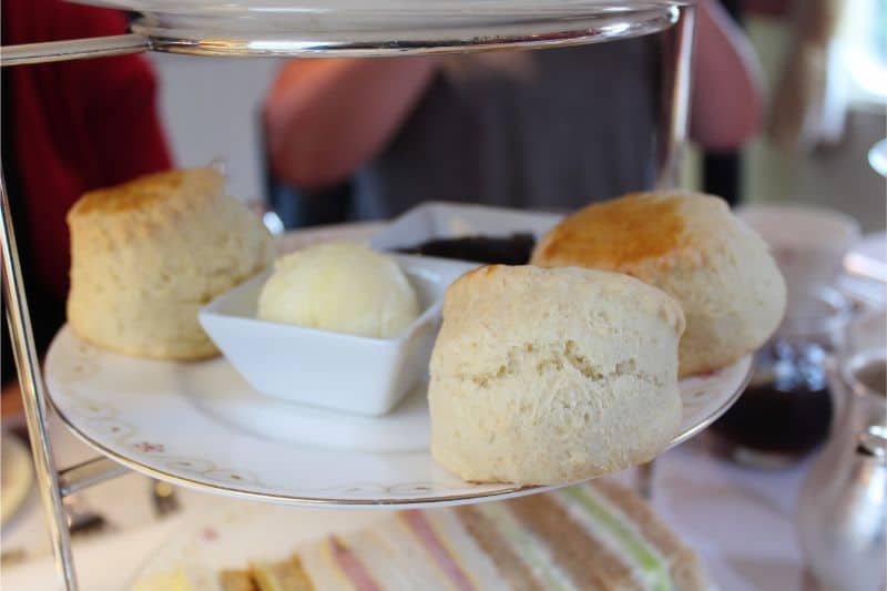 Scones and cream afternoon tea