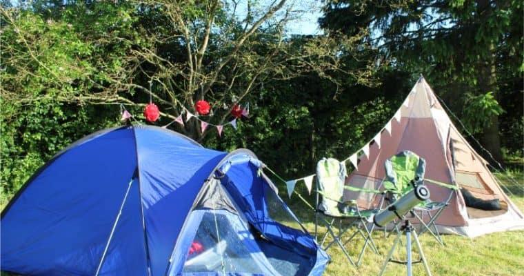 Wild Night Out Family Garden Mini Festival!