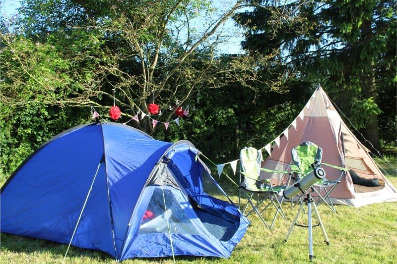 Wild Night Out Family Garden Mini Festival Yorkshire Wonders