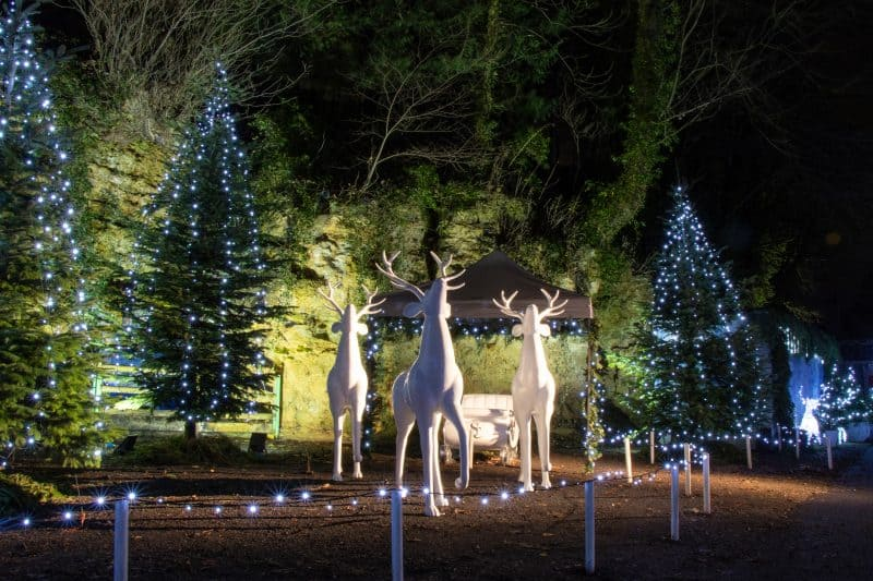 28 Magical Christmas Events in Yorkshire 2020