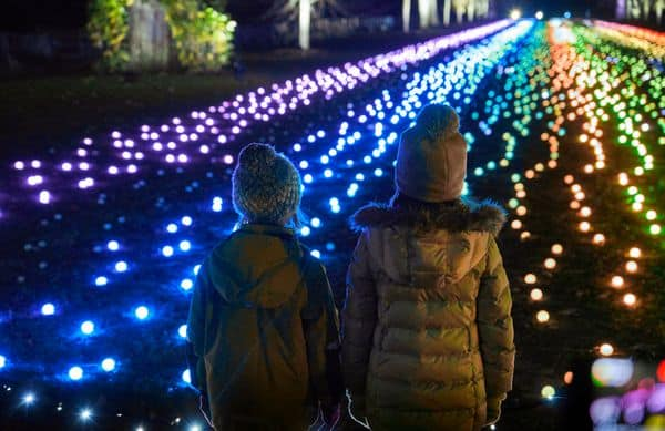 Magical Illuminated Trail at Dunham Massey – Christmas 2019