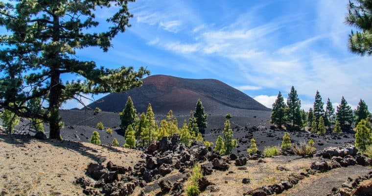 Things to do in Tenerife in December
