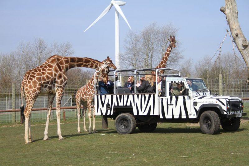 great yarmouth places to see animals