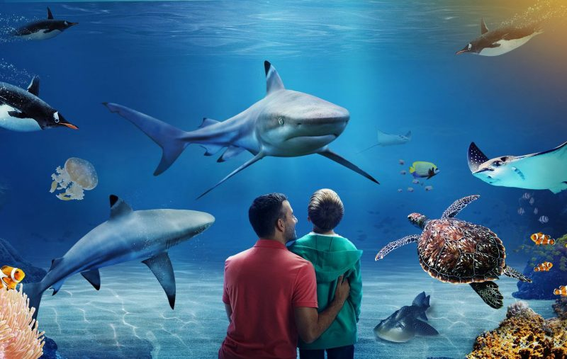 aquariums in great yarmouth