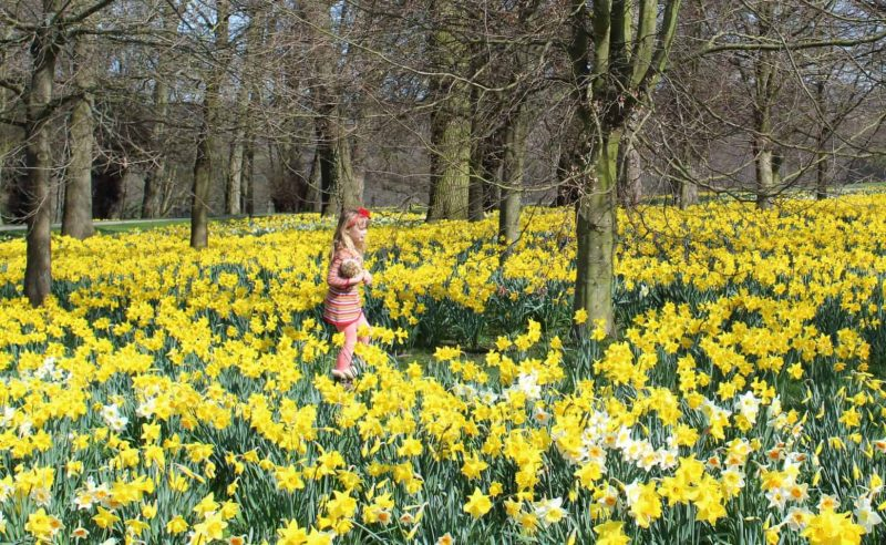 Things to do with the Kids at Easter in Yorkshire 2020
